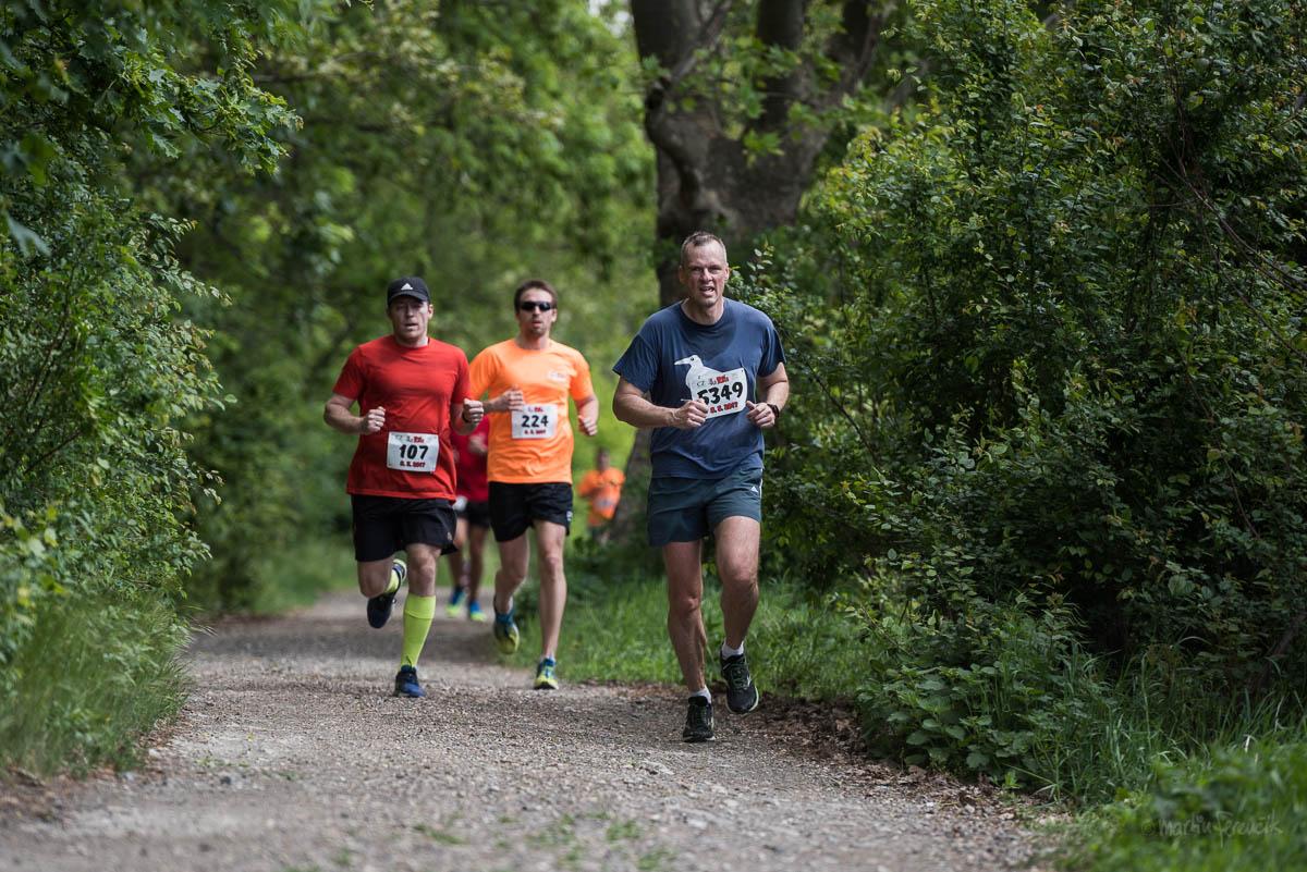 Dospelí bežci počas Pomlé Run
