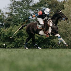 Horse Polo v x-bionic sphere